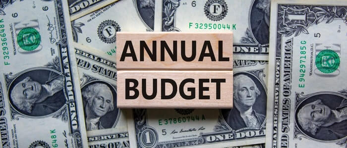 annual business budget